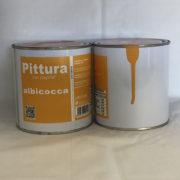 Pittura per Papille, Confetture di Albicocche, Luvirie
